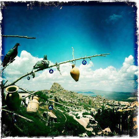 Cappadoce (Vallée des pigeons)