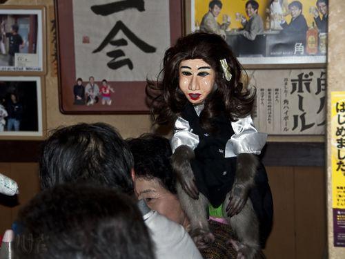 Girl monkey shoulder