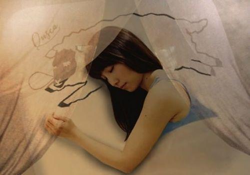 Quska-sleeping-cafe-550x386