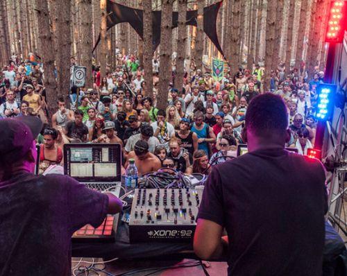 DJs in trees